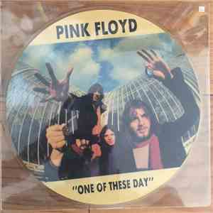 Pink Floyd - One Of These Days flac album