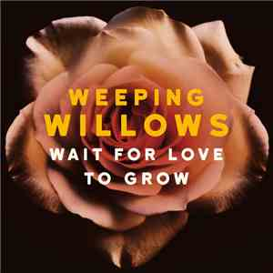 Weeping Willows - Wait For Love To Grow flac album