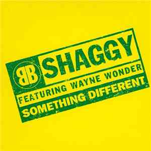 Shaggy - Something Different flac album
