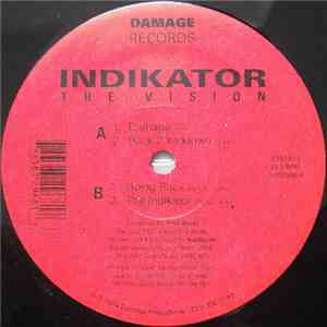 Indikator  - The Vision flac album